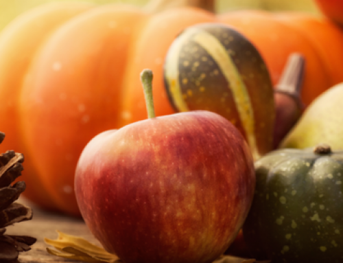10 Superfoods for Your Fall Menu