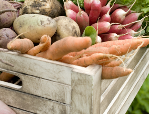 Organic Food: Healthy or Hoax?